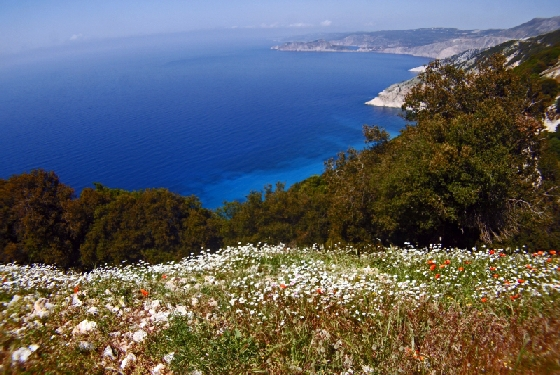 ED MYRTOS spring Kefalonias Magnificent Scenic Drive