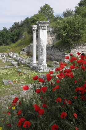 Phillippi Poppies and Pillars HHall Why you should visit Greece in 2013