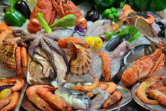Seafood Five Foods you have to try in Crete