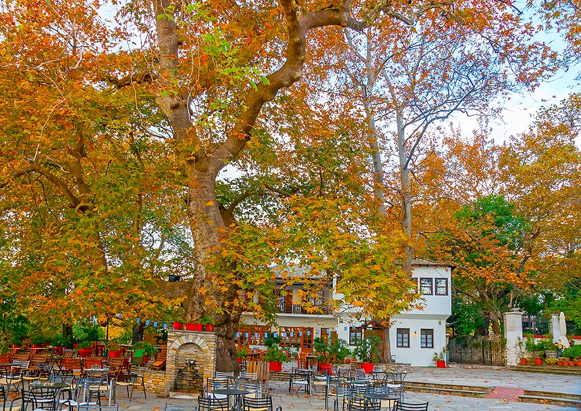 Portaria 5+1 reasons to fall in love with Pelion
